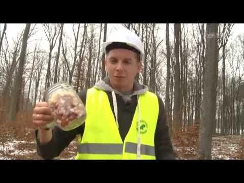 Kuchnia dla drwala- Okrasa łamie przepisy- TVP - YouTube