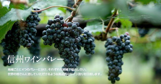 信州ワインバレー