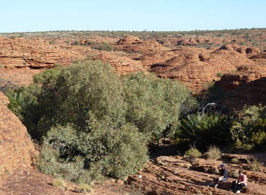 Kings Canyon Walk on the Wild Side in Central Australia - was here back in 1993 :)