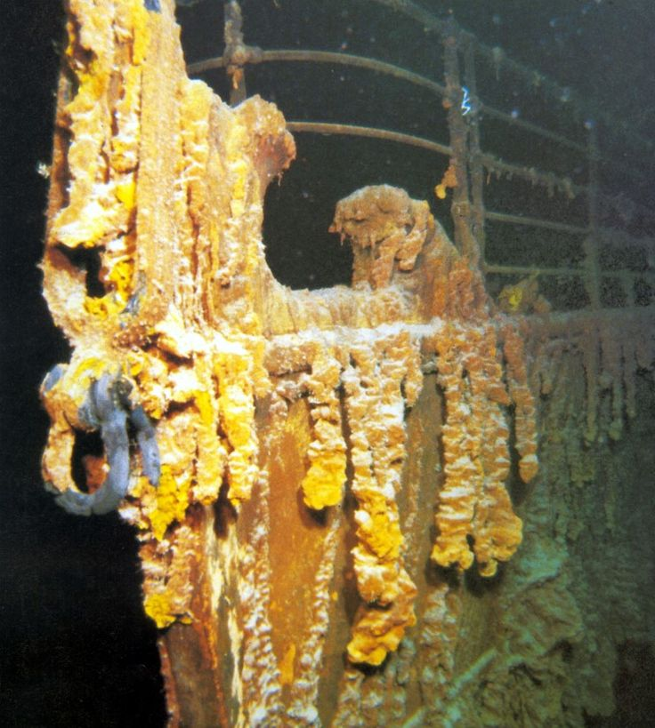 For 73 years the Titanic lay on the bottom of the Atlantic, the wreck of the Titanic was finally found on September 1, 1985 by Dr. Robert Ballard. This photograph shows the stem of the Titanic.