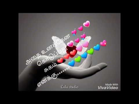 Super lovely status video.... - YouTube
