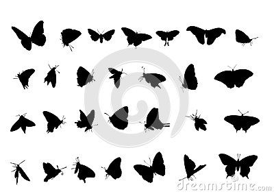 Vector Illustration of flying butterfly silhouette.