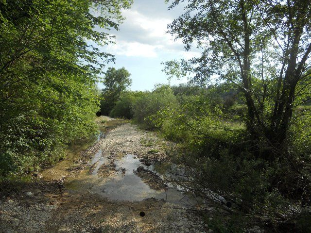 Between the town of Tarano and Torri in Sabina, there is a stream, the Hague