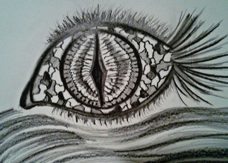 My design of a fish eye