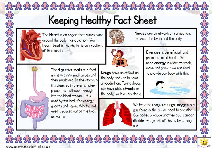 A4 fact sheet to support the teaching of this topic (5A). One side includes key information with picture support and clearly printed text while the other side has a glossary of appropriate vocabulary.