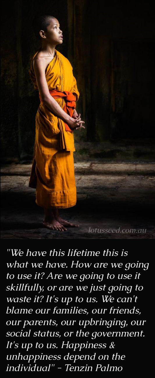 Click the Pin to get more Tenzin Palmo quotes by lotusseed.com.au