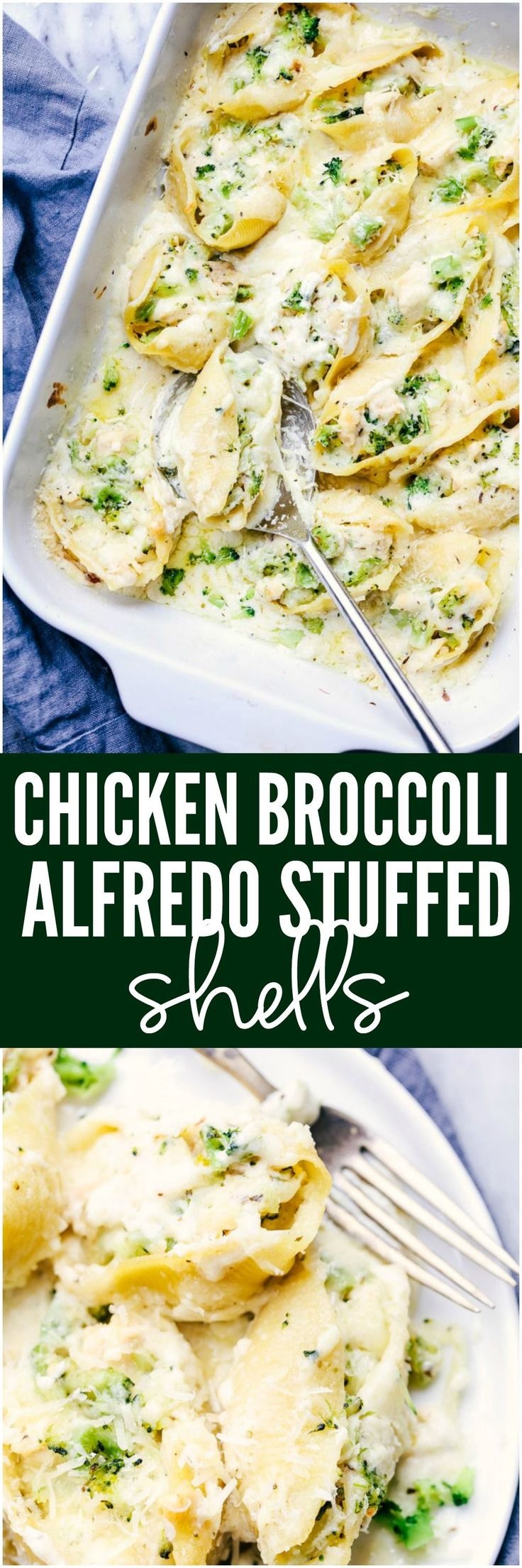 Chicken Broccoli Garlic Alfredo Shells are stuffed with tender chicken, cheese, broccoli, and homemade alfredo sauce. These shells are creamy, cheesy and out of this world delicious! #chickenbroccoli