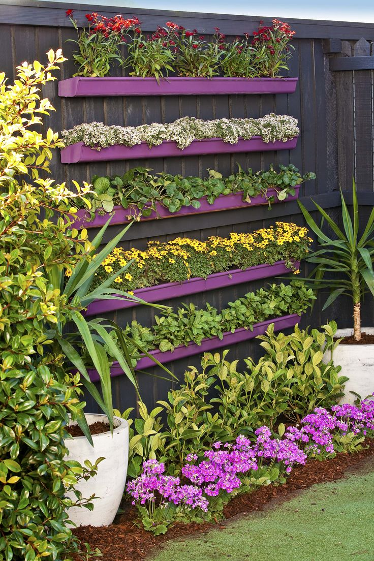 Lengths of guttering, evenly spaced and screwed to your back fence, become an instant and eye-catching DIY vertical garden. Top tip? Pick an accent colour for the guttering and then coordinate your plant choice to match.
