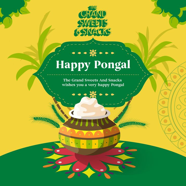 Pongal, a 2000-year-old festival was called Puthiyeedu in the Medieval Chola empire days. Puthiyeedu literally means 'the first harvest of the year'.  #GrandSweets #Pongal #SouthIndian  https://thegrandsweetsandsnacks.com/ II Blazing fast delivery throughout Chennai city II  II Expedited delivery worldwide II