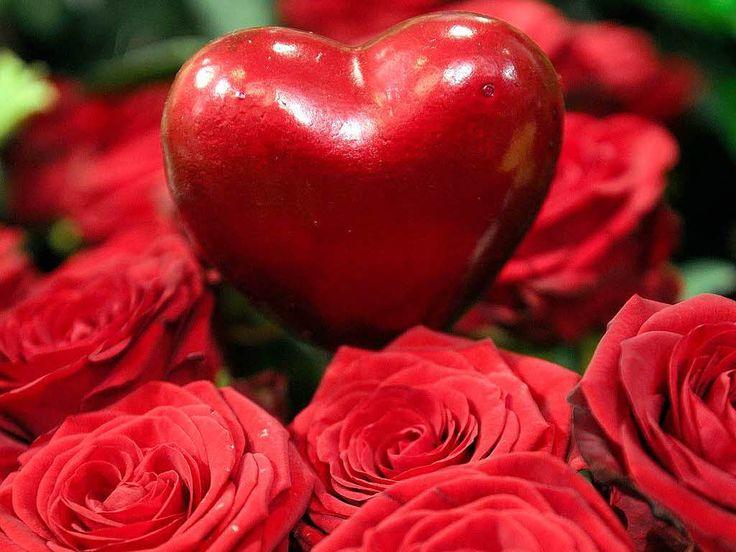 Bald Ist Valentinstag! Lust Auf Eine Schöne Geschichte über Freundschaft  Und Liebe? Https: