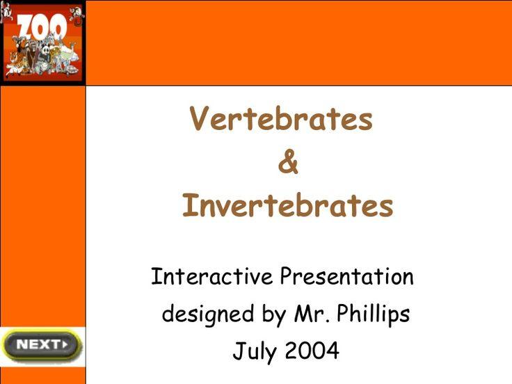 Vertebrates and Invertebrates - good for stations