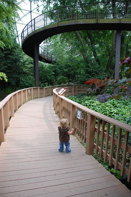 Queens Zoo Aviary by Joe Shlabotnik, via Flickr....  Multiple levels to walk in order to see more wildlife. Crucial in domes.