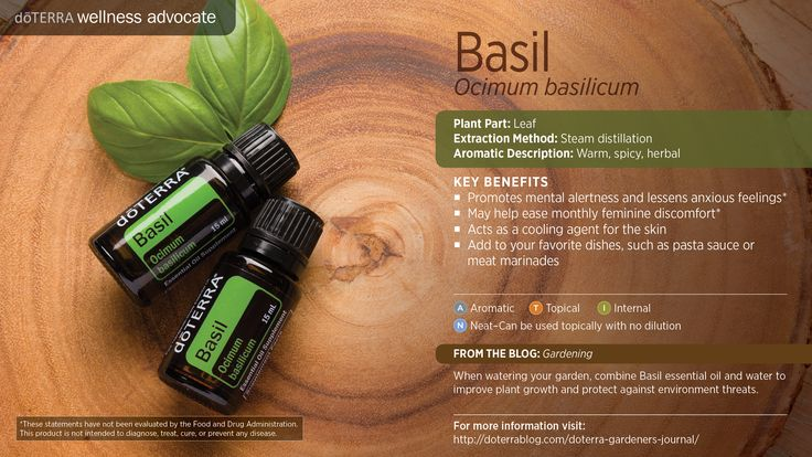 doTerra Power Point Image - Single Oil - Basil