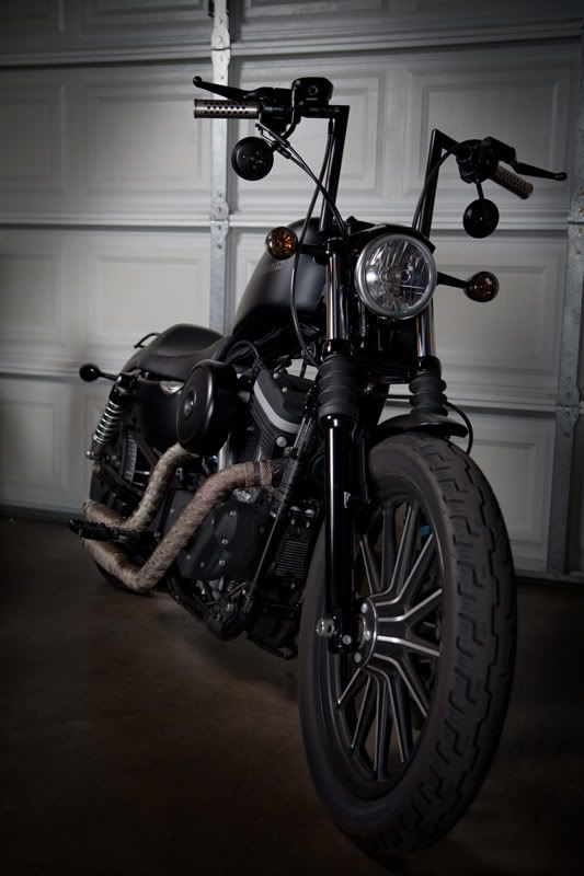 Custom HD Iron 883