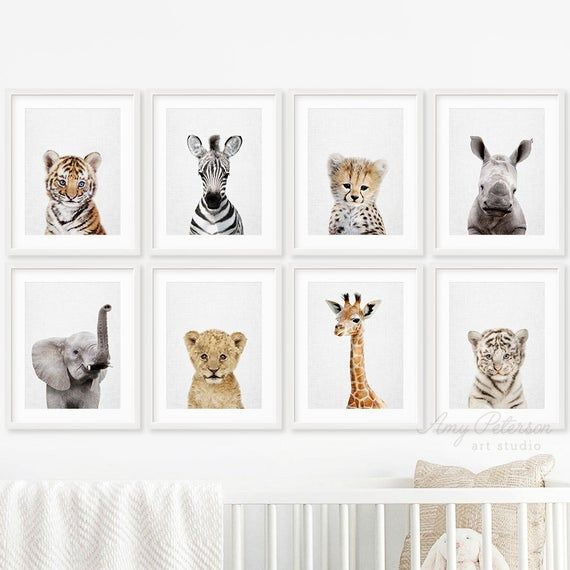 Safari Animal Print Set Of 8 For Nursery Decor Baby Animal Etsy Safari Nursery Decor Baby Animal Prints Baby Animal Nursery