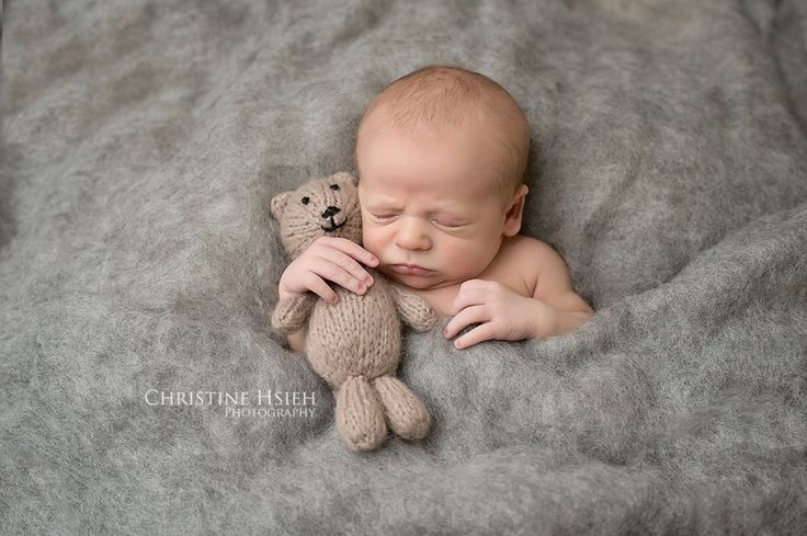 Newborn with lovey bear christine hsieh photography south central pa and northern maryland newborn and baby photographer southern york pa baby