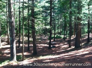 A Trail Running Weekend...: Trail Running, Mothers Runners