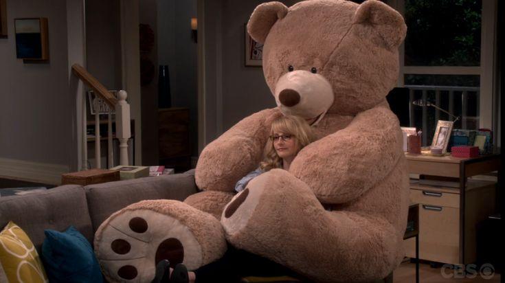 S9#20 : Bernadette feels bad for asking Raj to back-off. Howard went to get him & the bear back.