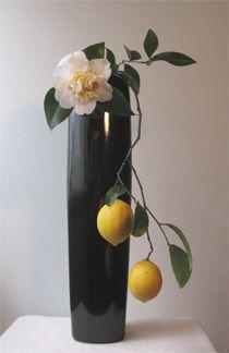 sogetsu style ikebana flower arrangement with citrus fruit