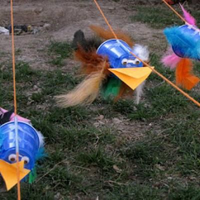Bird Races Activity for Kids at Tip Junkie, Group Games, Art and Crafts, Science