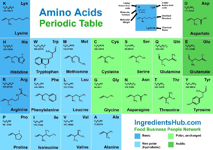 Amino Acids Periodic Table Food Ingredients by IngredientsHub - amino acid chart