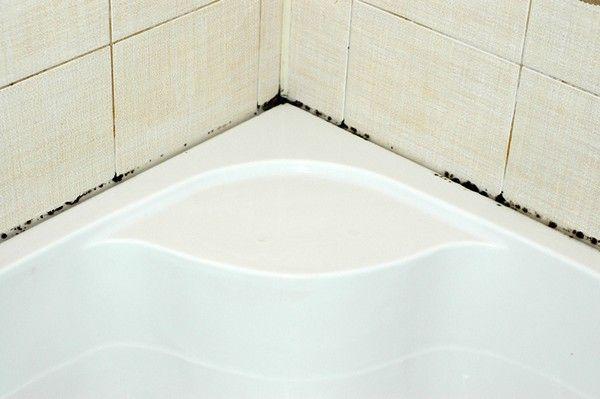 Как убрать плесень в ванной — легко,просто и навсегда! — В Курсе Жизни