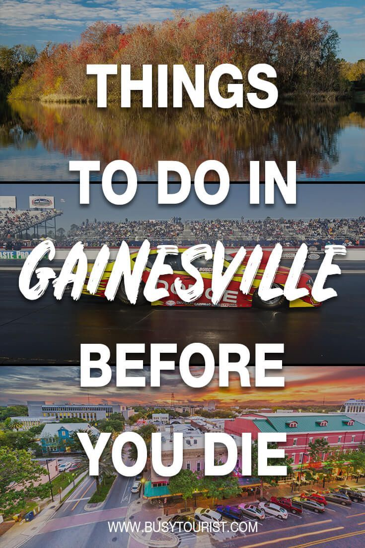 21 Fun Things To Do In Gainesville Florida Gainesville Florida Gainesville Florida Travel