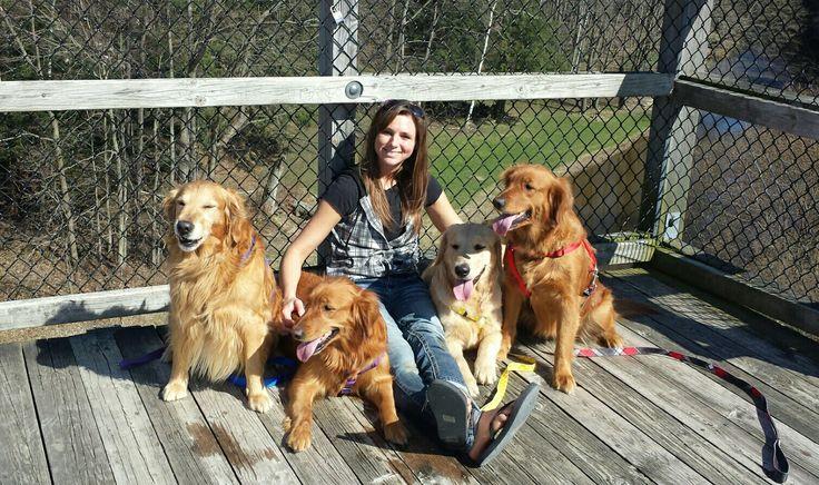 Golden Retrievers love going for walks, and so do I.