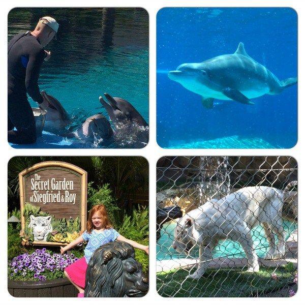 Las Vegas Siegfried and Roy Secret Garden and Dolphin Habitat