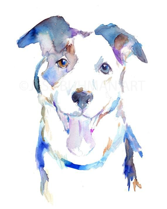 Druck Der Aquarell Border Collie 8 X 10 Hund Malerei Lila Blau