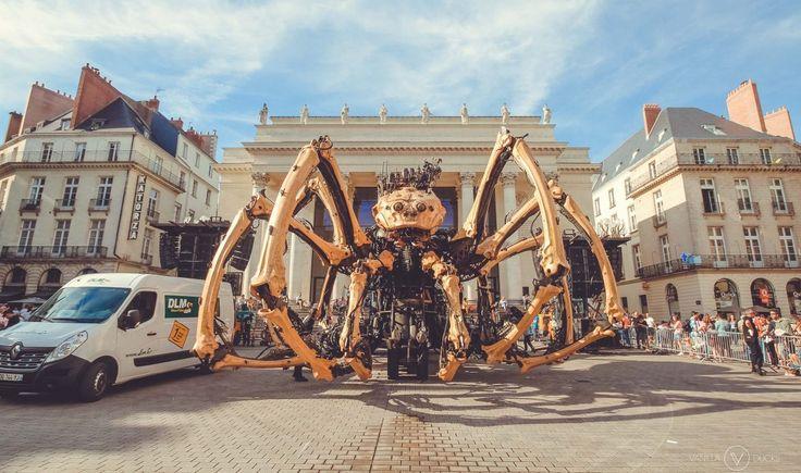 Kumo l'araignée géante se repose sur la place Graslin, à Nantes