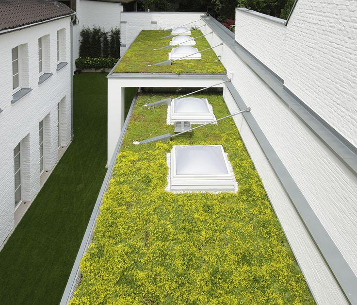 MobiRoof sedum cassettes, ideal as a green roof