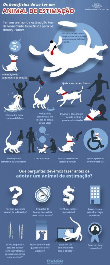 Os benefícios de se ter um animal de estimação