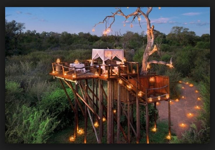 The creativity of the raised platform is an interesting aspect for a game lodge, with a great view