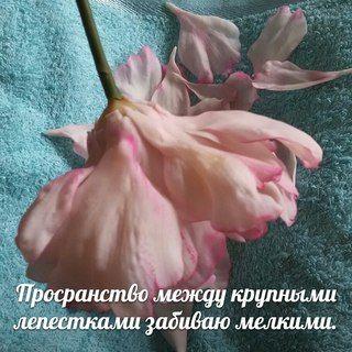 Цветочные композиции из флористических глин.Омск
