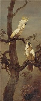 Cockatoos By Lee Man Fong