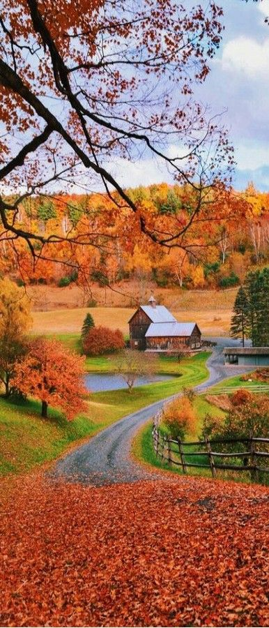 Pin By Newyu Fitness On Travel The World Autumn Scenery Beautiful Landscapes Autumn Scenes