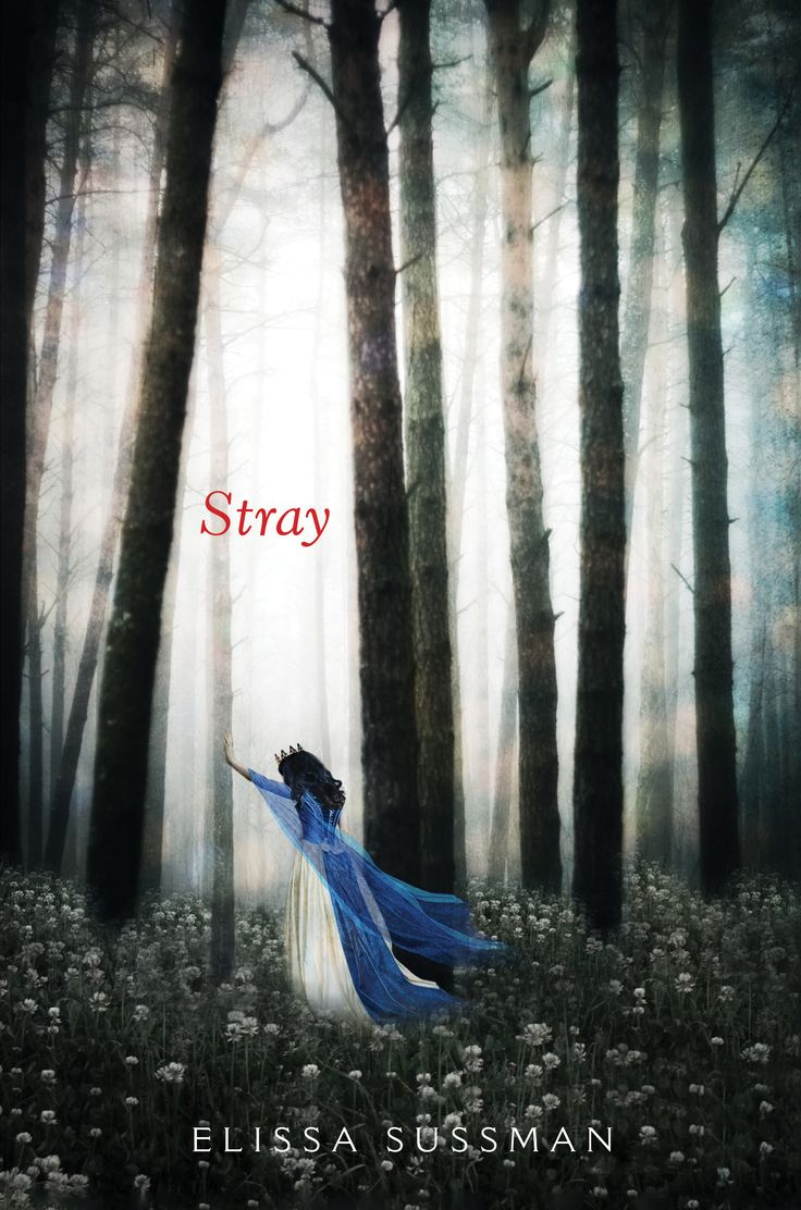 Stray (Snow Glass Apples) by Elissa Sussman