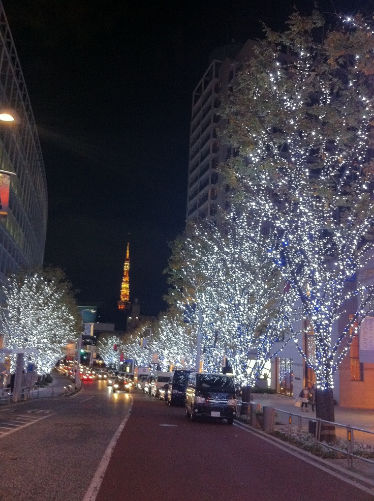 Can you see the Tokyo Tower?