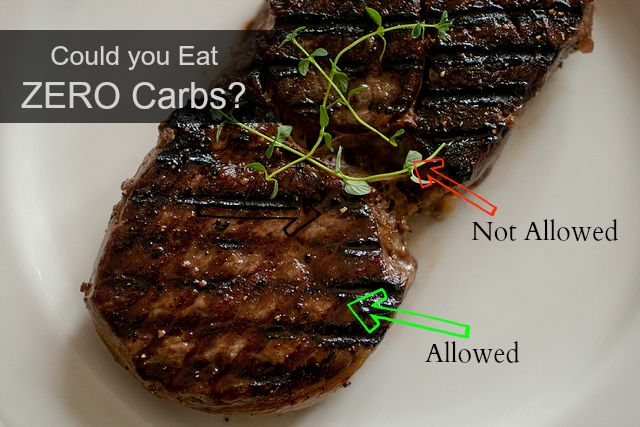 Eat Fat Lose Fat | My Zero Carb Diet Experiment – Day 10-22 Update |