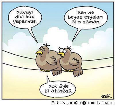 - Yuvayı dişi kuş yaparmış. + Sen de beyaz eşyaları al o zaman. - Yok öyle bi atasözü. #karikatür #mizah #matrak #komik #espri #komik #şaka #gırgır #sözler #güzelsözler #komiksözler