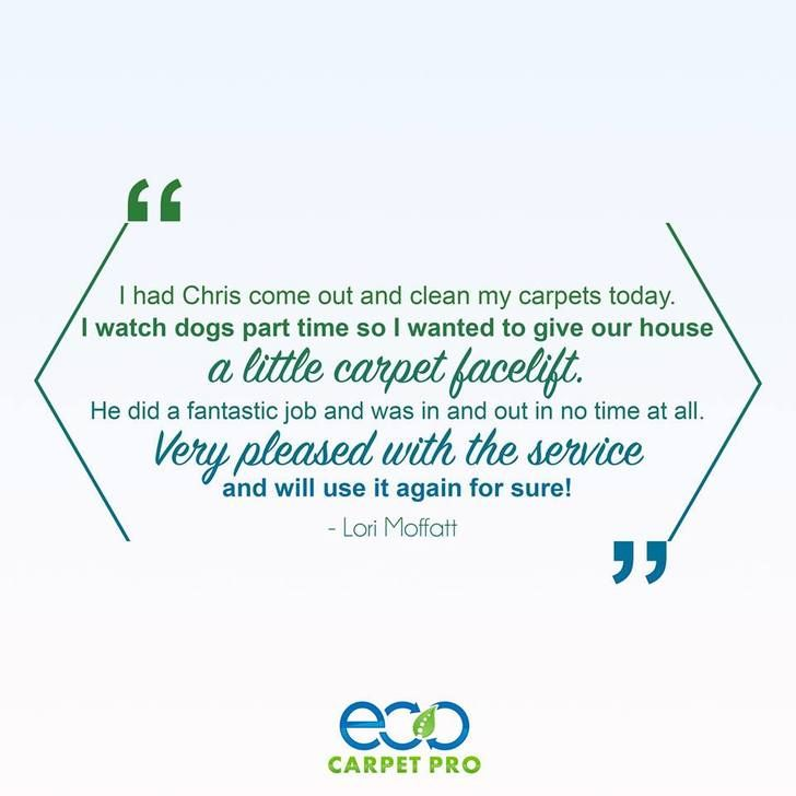 Eco Carpet Pro is Necessary for Mothers