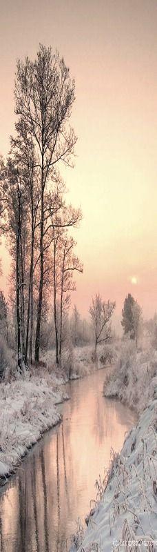 winter pink sky