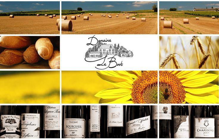 Domaine Le Bost | Thiviers | Dordogne | Frankrijk | France | Frankreich