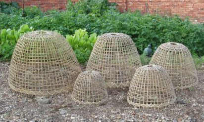 Bamboo garden cloche...I want these to protect my seedling from birds, bunnies, squirrels and any other feathery or furry creatures that enjoy munching in our garden....