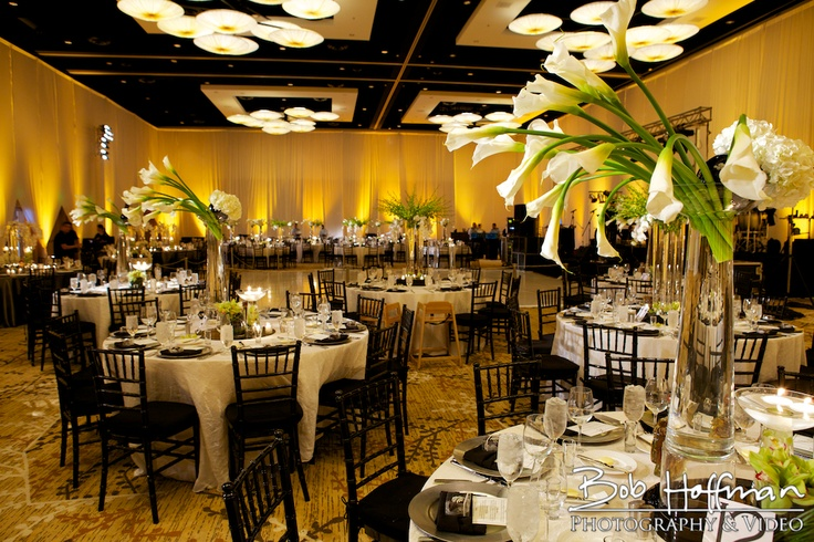 wedding decorations san diego 35 best images about san diego wedding venue ideas on 9150