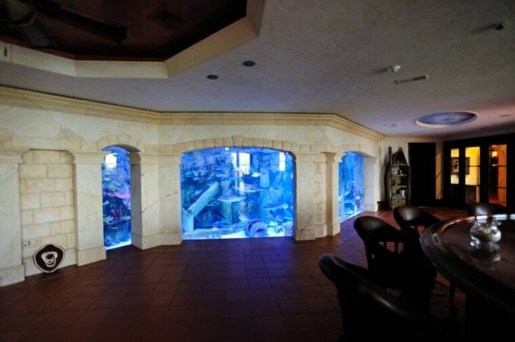Man Cave Tank : Best images about man cave on pinterest caves