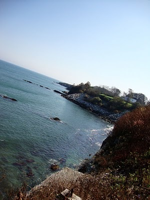 Happy New Year? | Newport cliff walk, Favorite places ...