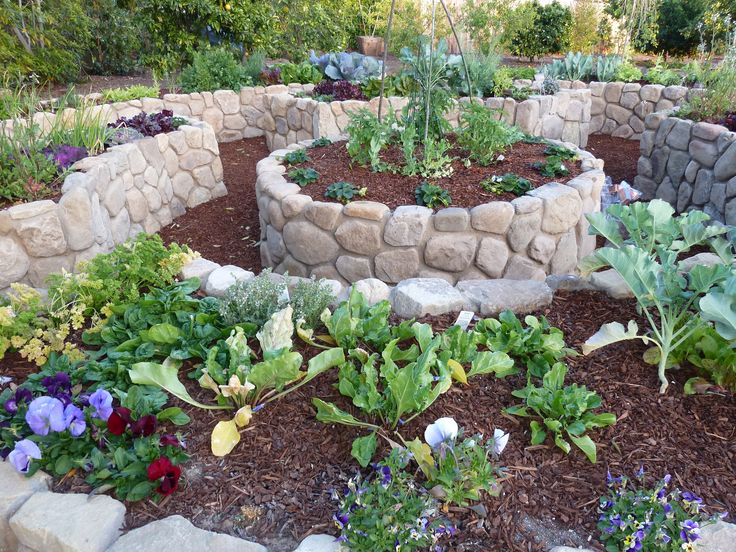 136 best edible garden design images on pinterest edible for Edible garden design ideas