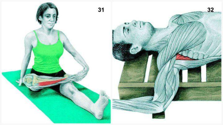 X2231. Задействованные мышцы: передняя большеберцовая  Выполнение: сядьте и заведите одну руку назад, одну ногу положите на другую выше колена, придерживая ее рукой.  32. Задействованные мышцы: подлопаточная  Выполнение: лягте на спину, отведите руку, согнутую под углом 90 градусов, в сторону. Медленно опустите заднюю поверхность руки на пол.